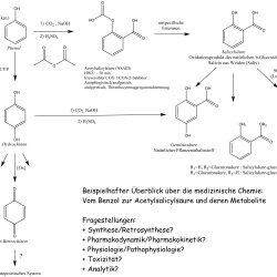 Medizinische Chemie - Logo